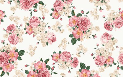 background-floral-pattern-rosa-words-Favim.com-133892