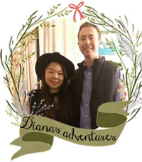 dianas-adventures